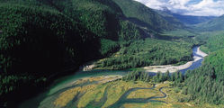 Clayoquot Wilderness Resort - Aerial-View.jpg