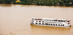 The Orcaella