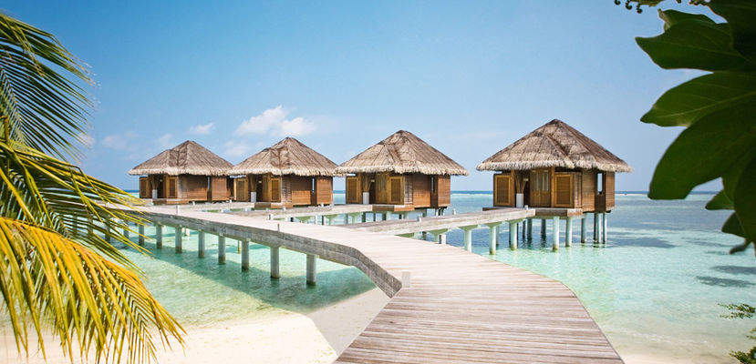 Honeymoons to the Maldives